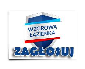Wzorowa Łazienka – Głosujemy!